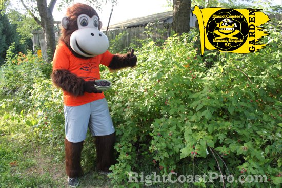 GARDEN RightCoastPro Soccer Wrestling Sports Delaware