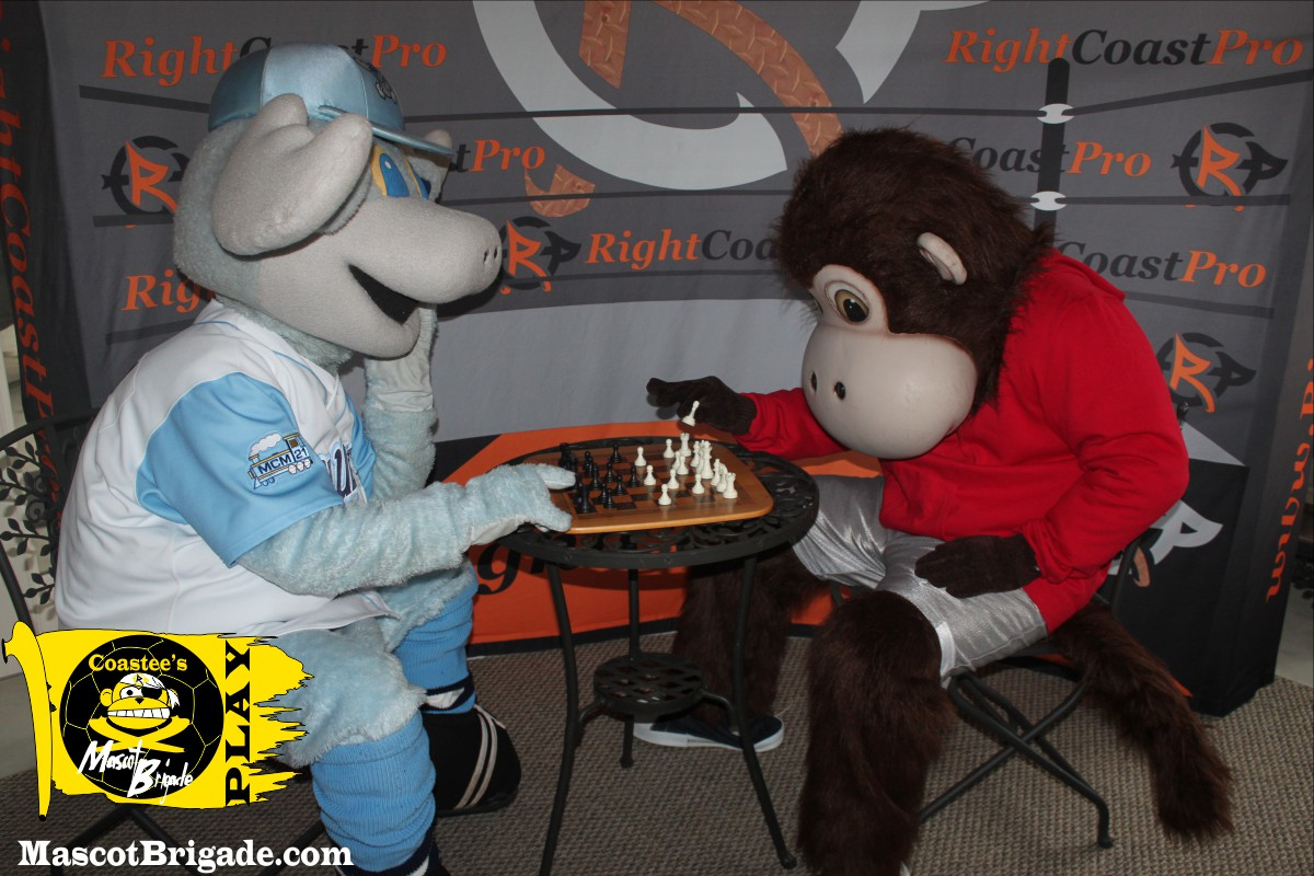 R World Chess 1 MascotBrigade Coastee Playground