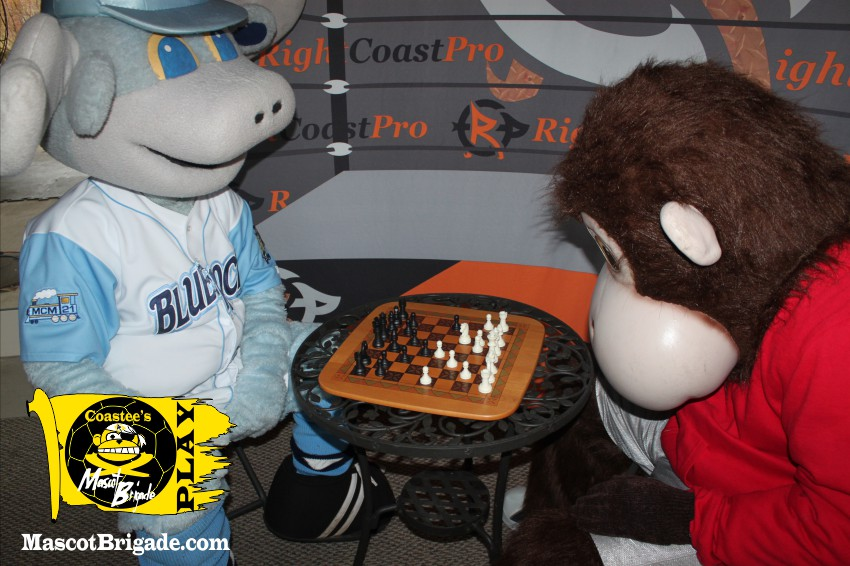 MascotBrigade Coastee Chess
